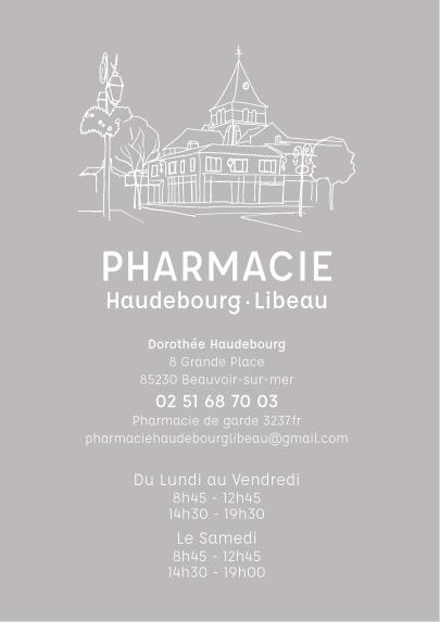 Vitrophanie-Pharmacie-Haudebourg-Libeau1